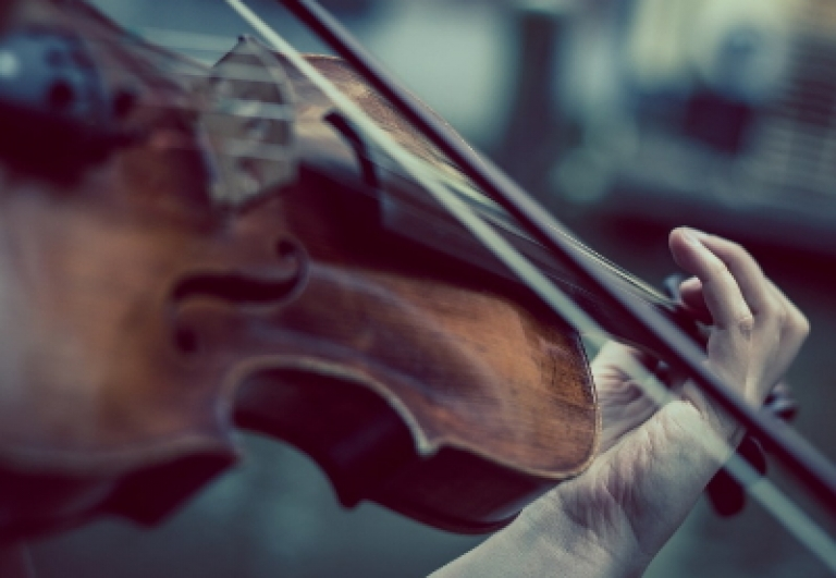 wunderkammer-museo-musica-bologna