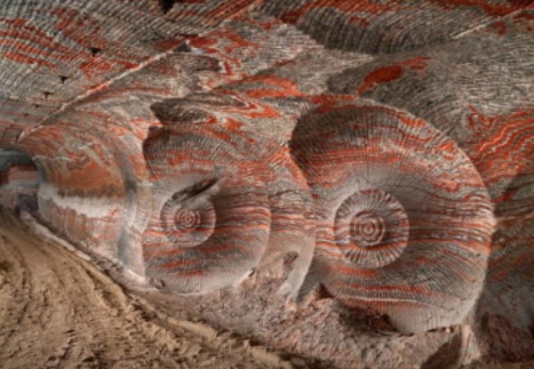 mostra-anthropocene-bologna-guida