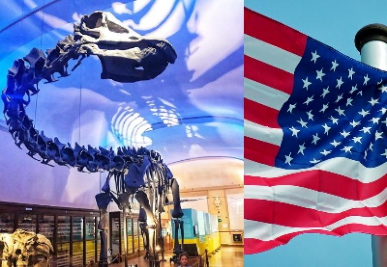 museo-dinosauro-bologna-guida-turistica