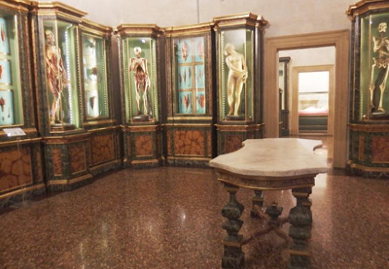 musei-bologna-appuntamenti-guida-turistica